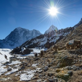 Everest Base Camp Experience