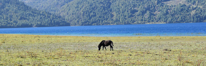 Rara Lake Trek (Flight & Trek)